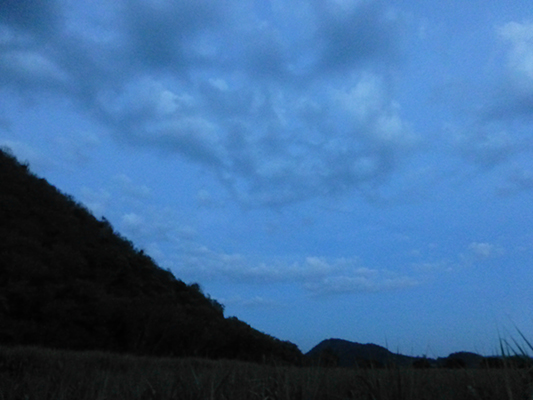 It's a little hard to see them, but you can see a zig-zag trail of bats coming from the mountain.