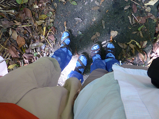 Our blue leech socks.