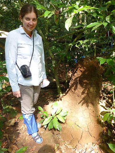 Huge termite nests.