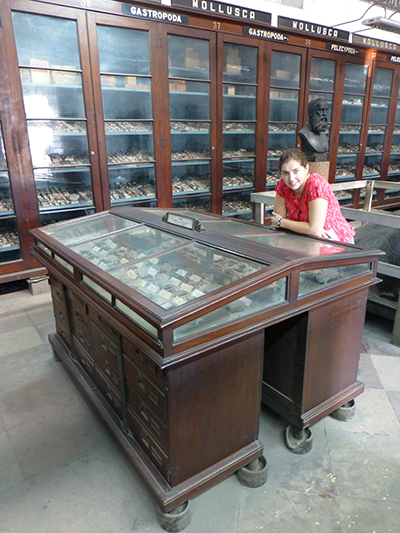 Beautiful old display cabinets.