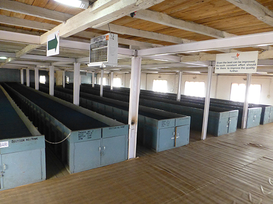 The beds where the tea leaves are partially air dried.