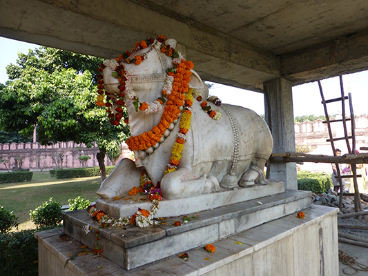 I love how they decorate the cows at some of the Hindu temples.