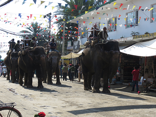 Nepal also included a lot more elephants versus one.