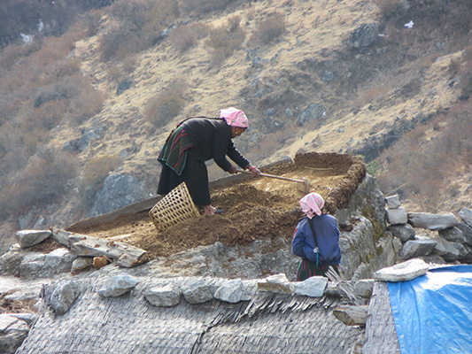 Women drying and collecting hay near our guesthouse on the second night.