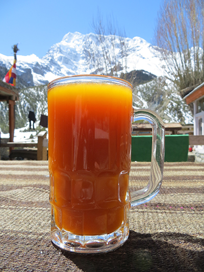 Seabuckthorn juice. This juice is from a fruit that grows only at higher elevation. It was yummy.